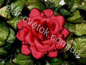 Роза павлин большая атлас