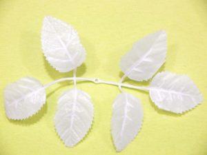 Лист розы белый