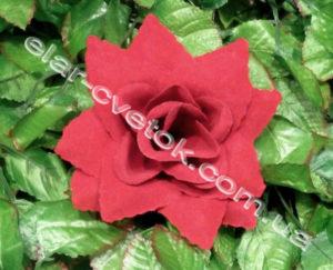 Роза острая бархат