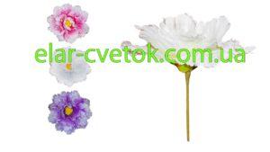 Цветок Дюймовочки